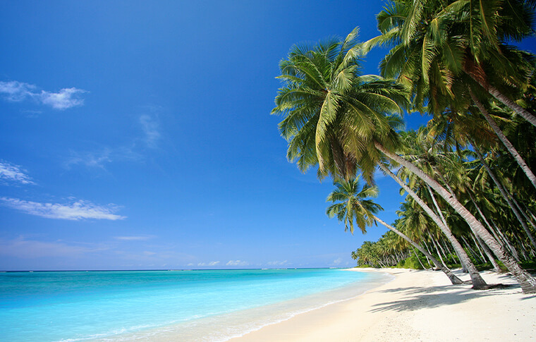 Stunning tropical island with turquoise blue water, white sand and palm trees