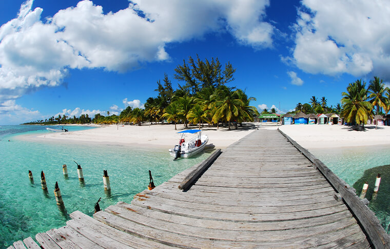 Taken from a wooden pier, looking back onto the tropical plam tree island