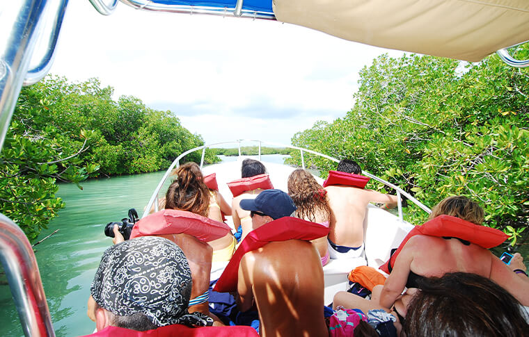 Group of guests with lifejackets on a boat sailing through the green mangroves