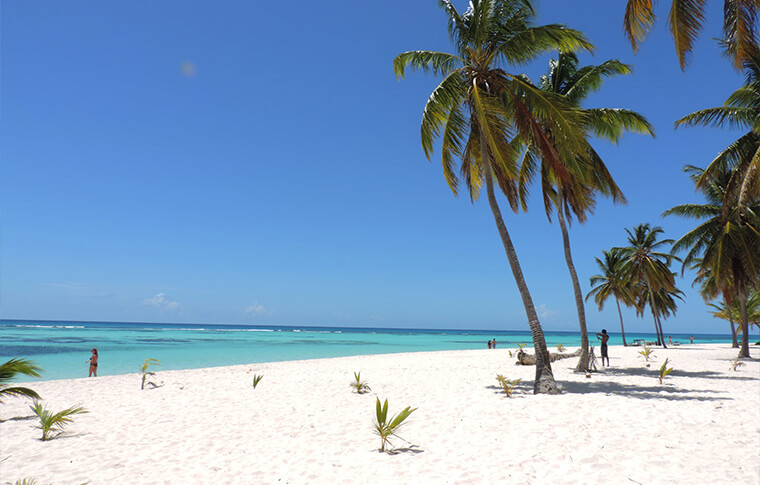 Palm tree studded white sandy beach overlooking the beautiful Caribbean waters