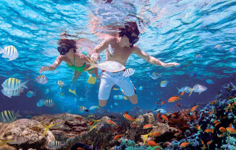 2 young boys snorkeling on a reef